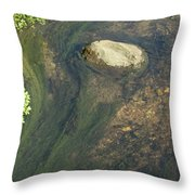 Stream Of Weeds IIi Throw Pillow