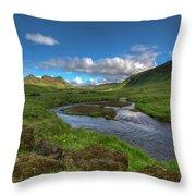 Stream South Iceland Throw Pillow