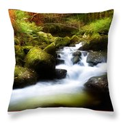 Stream Steps Throw Pillow