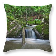 Stream Waterfall Throw Pillow
