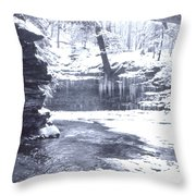 Streambed Throw Pillow