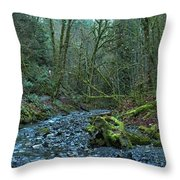 Streaming Through Goldstream Throw Pillow