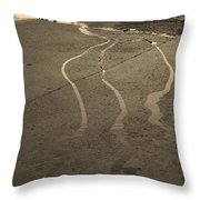 Streams In The Lot Throw Pillow