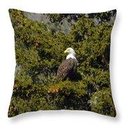 Streamside Eagle Throw Pillow