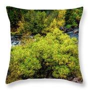Streamside Throw Pillow