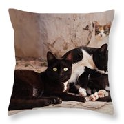 Street Cats - Portugal Throw Pillow