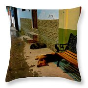 Street Dogs Throw Pillow