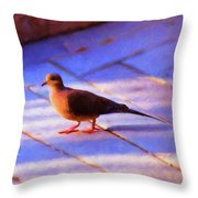 Street Dove Throw Pillow