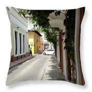 Street In Colombia Throw Pillow