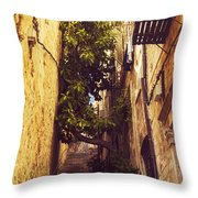 Street In Dubrovnik Old Town Throw Pillow