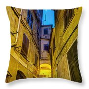 Street In Vernazza Throw Pillow