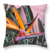 Strelitzia Double Bloom Throw Pillow