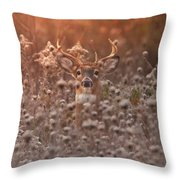Strength And Harmony Throw Pillow