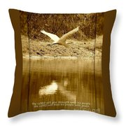 Strength And Peace Throw Pillow