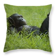 Stress Relief Throw Pillow