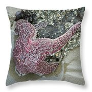 Stretched Starfish Throw Pillow