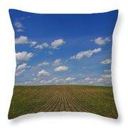 Stretching To The Horizon Throw Pillow