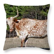 Strike A Pose - Longhorn Style Throw Pillow