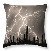 Striking Photography In Sepia Throw Pillow