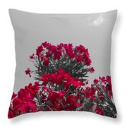 Striking Red  Throw Pillow