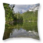 String Lake Teton Reflection Throw Pillow