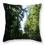 Stripe Of Sky Throw Pillow