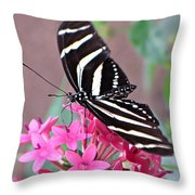 Striped Beauty - Butterfly Throw Pillow