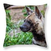 Striped Hyena Throw Pillow