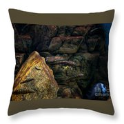 Striped Little Fishes In Aquarium Throw Pillow