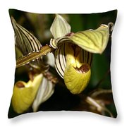 Striped Orchid Throw Pillow