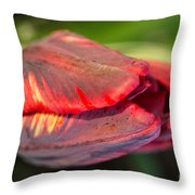 Striped Red Tulip Throw Pillow