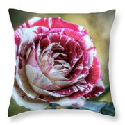 Striped Rose  Throw Pillow