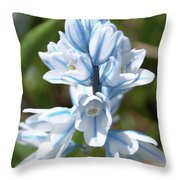 Striped Squill Emerging Throw Pillow