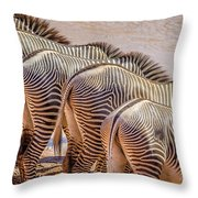 Stripes  7578 Throw Pillow