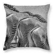 Stripes  7578bw Throw Pillow