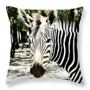 Stripes And Symmetry  Throw Pillow