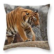 Stripes Throw Pillow by Jonas Wingfield