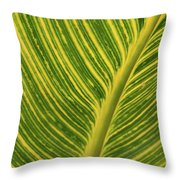 Stripey Leaf Throw Pillow