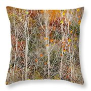 Stripped Bare To The Bark Throw Pillow