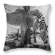 Stripped Pair Throw Pillow by Jeff Swanson