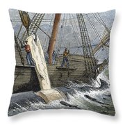 Stripping Whale Blubber Throw Pillow by Granger