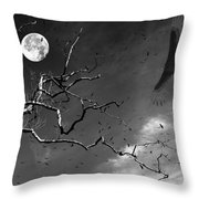 Stroke Of Midnight Throw Pillow