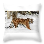 Stroll In The Snow Throw Pillow