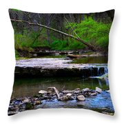 Strolling By The Stream Throw Pillow