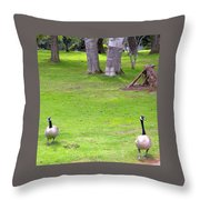 Strolling Canadian Geese Throw Pillow