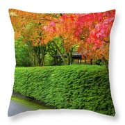 Strolling Path Lined With Japanese Maple Trees In Fall Throw Pillow