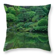 Strolling Pond Serenity Throw Pillow