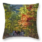 Strolling The Upper Cascades Trail Throw Pillow