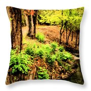 Strolling Through The Park Throw Pillow by Savannah Fonner
