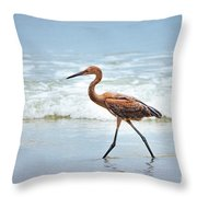 Strolling Throw Pillow by Todd Blanchard